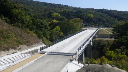 国道266号広域連携交付金(望薩峠4号橋上部工)工事